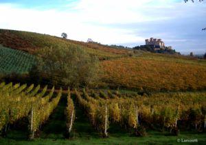 Strada del Prosciutto e dei Vini dei colli di Parma