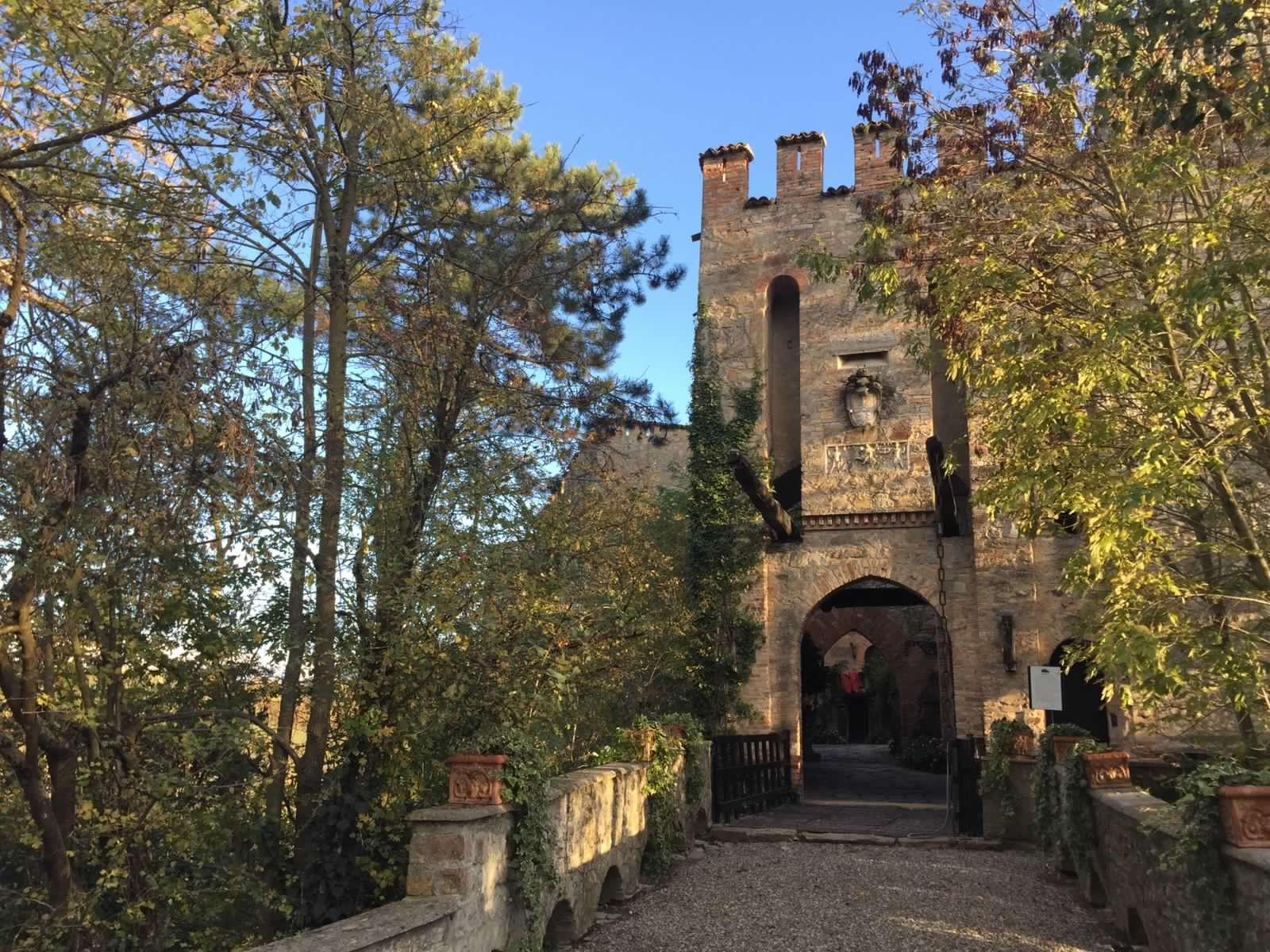 Passeggiando a Ruota Libera: visita guidata dal fondo del torrente Vezzeno alla cima della torre, fra storia, natura e passione.
