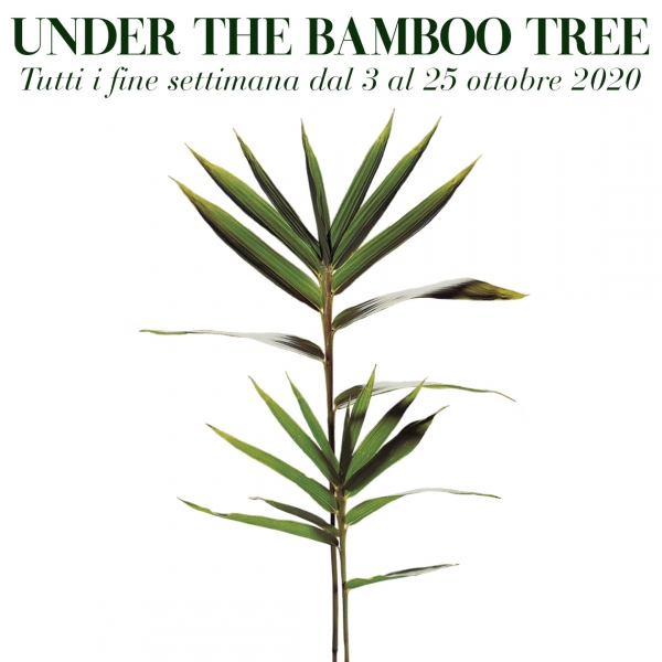 Under the bamboo tree 2020 - Il mese del bambù